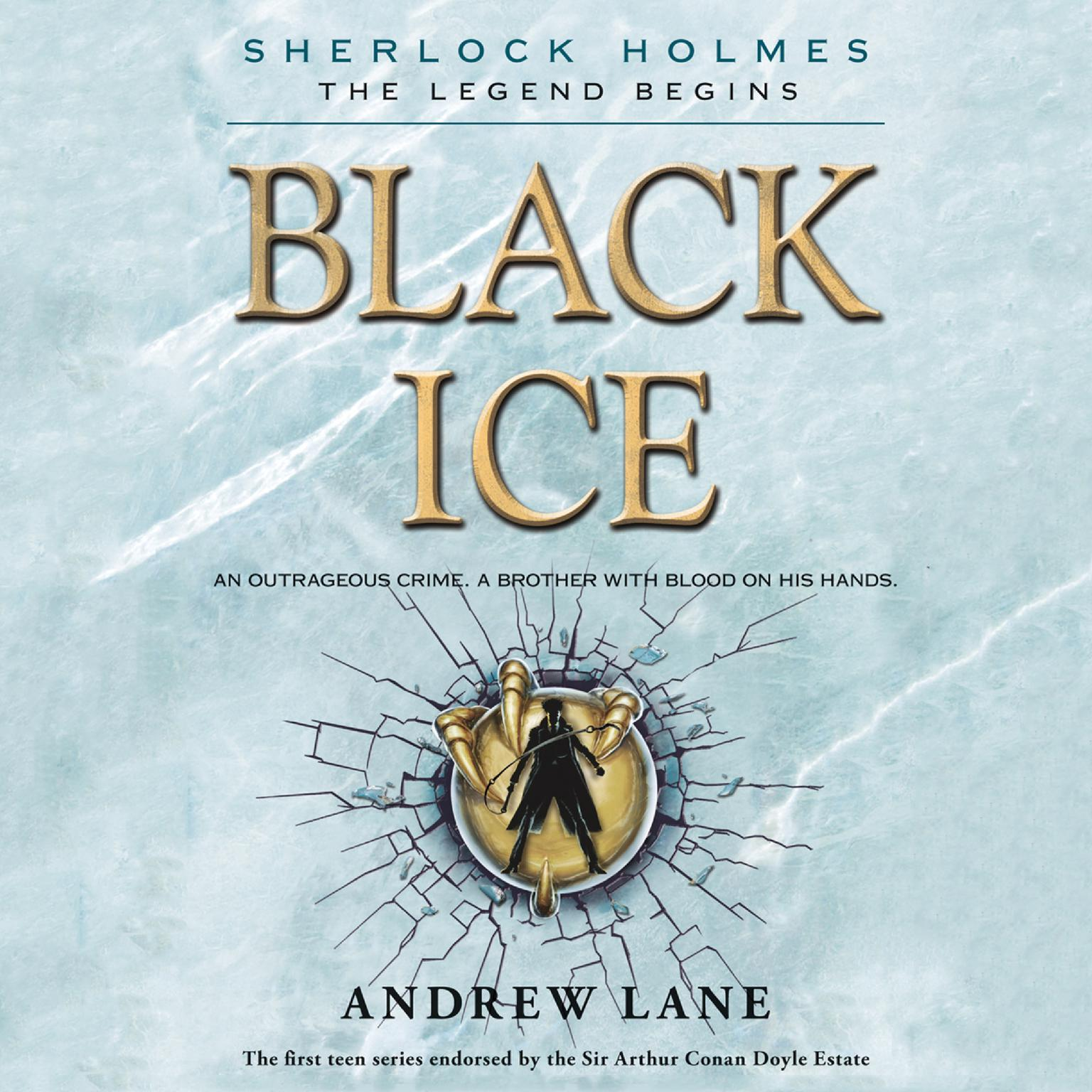 Printable Black Ice Audiobook Cover Art