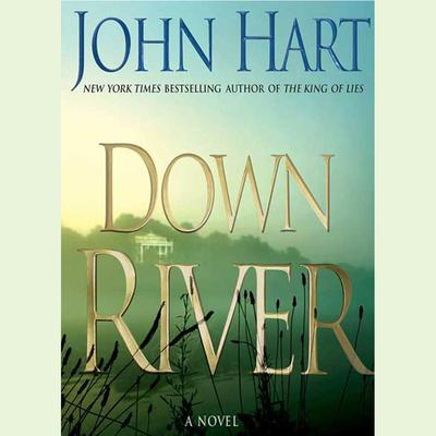 Down River: A Novel Audiobook, by