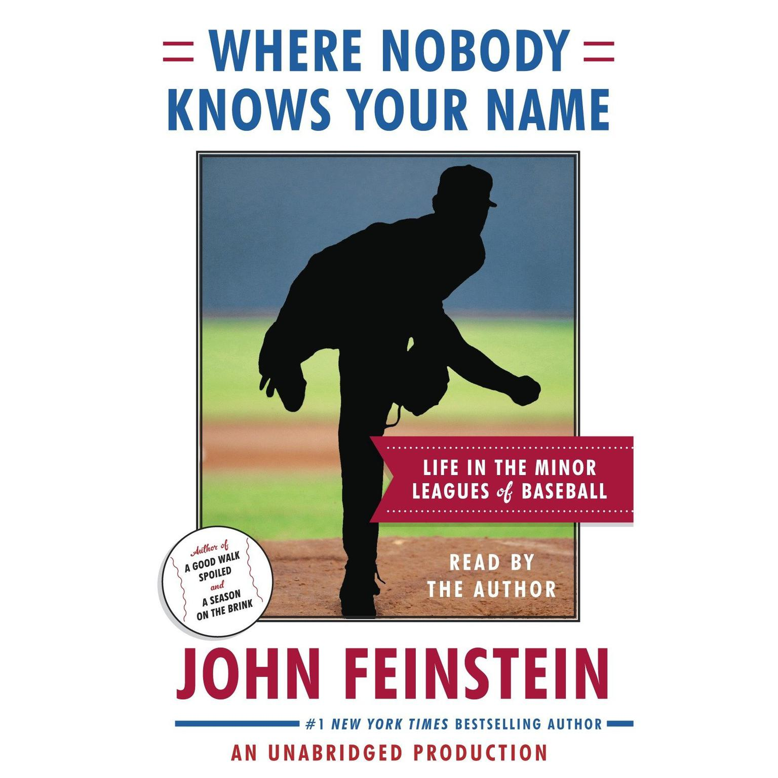 Printable Where Nobody Knows Your Name: Life In the Minor Leagues of Baseball Audiobook Cover Art