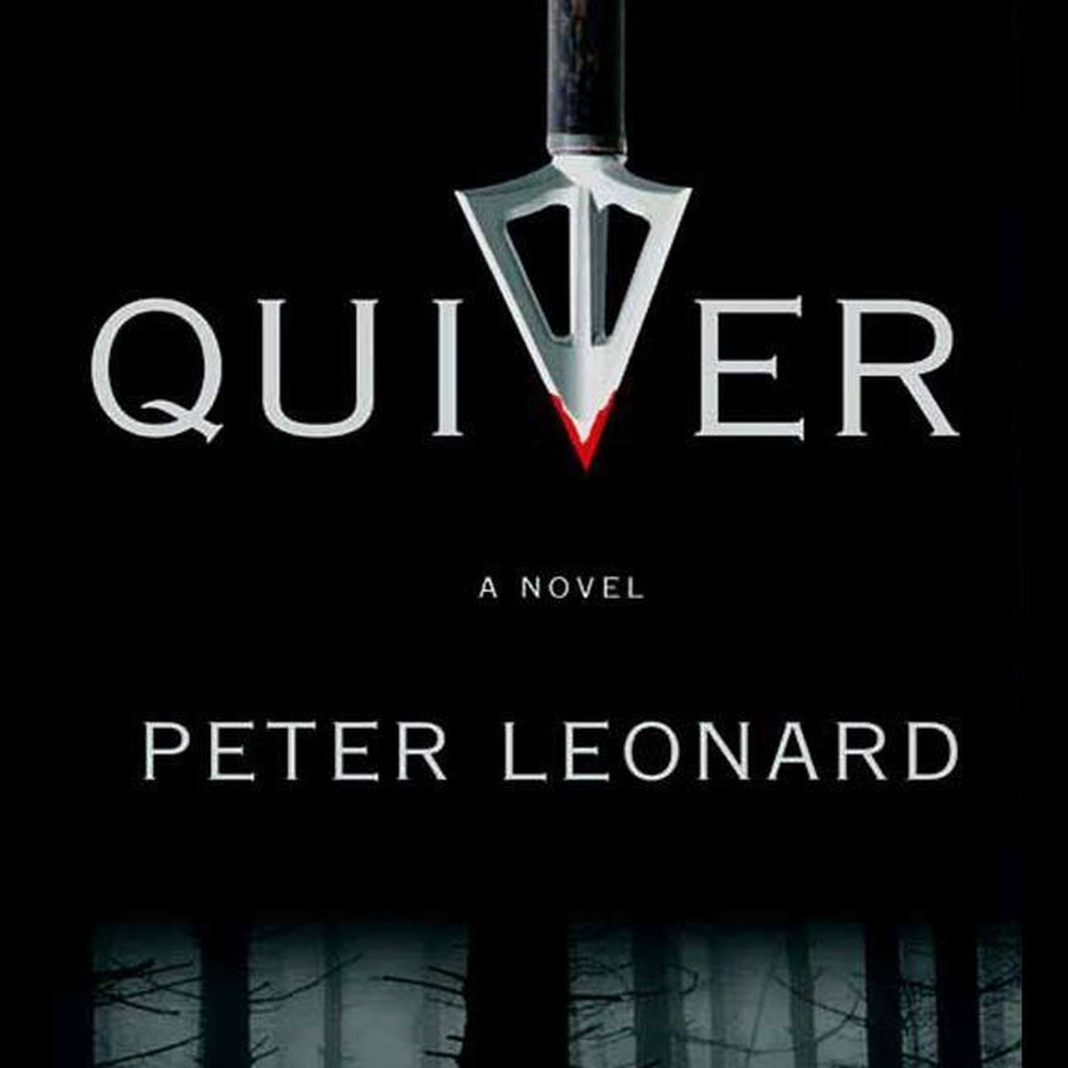 Printable Quiver: A Novel Audiobook Cover Art
