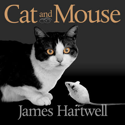 Cat and Mouse: Book of Persian Fairy Tales Audiobook, by Hartwell James