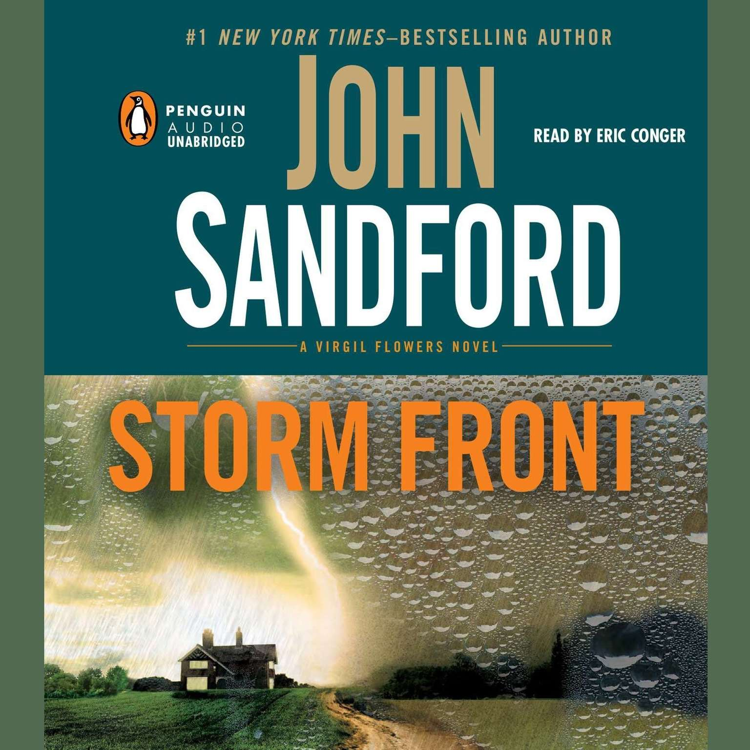 Printable Storm Front Audiobook Cover Art