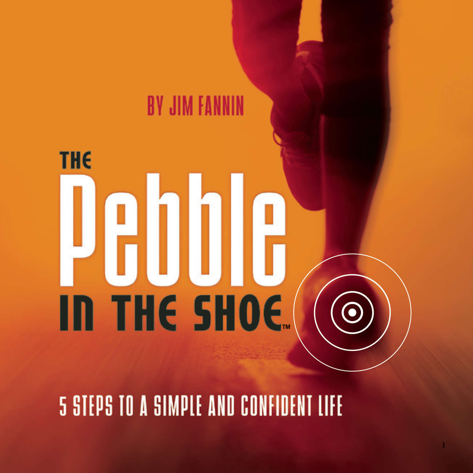 Printable The Pebble in the Shoe: 5 Steps to a Simple Confident Life Audiobook Cover Art