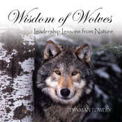 Wisdom of Wolves, by Twyman Towery
