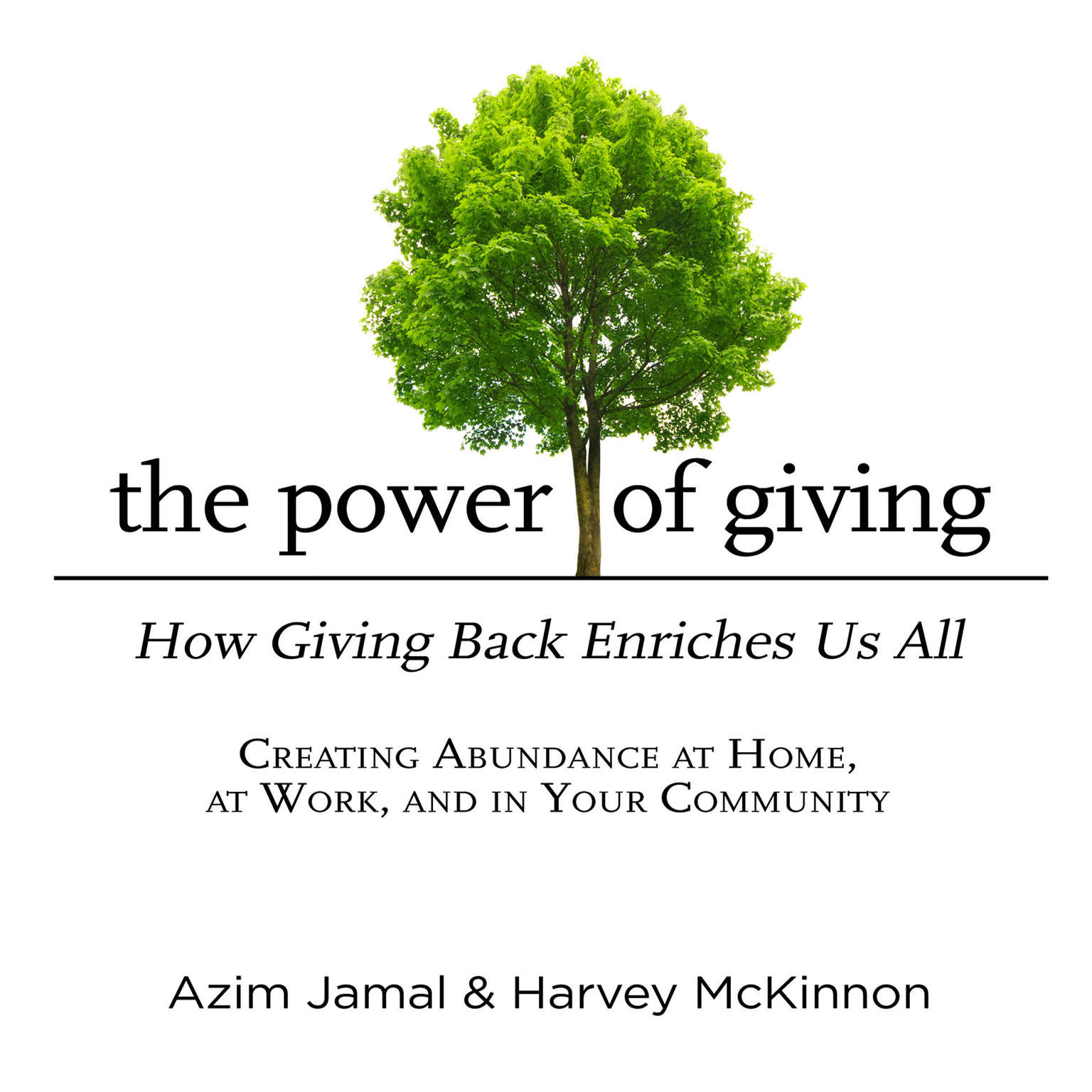 Printable The Power of Giving: How Giving Back Enriches Us All Audiobook Cover Art
