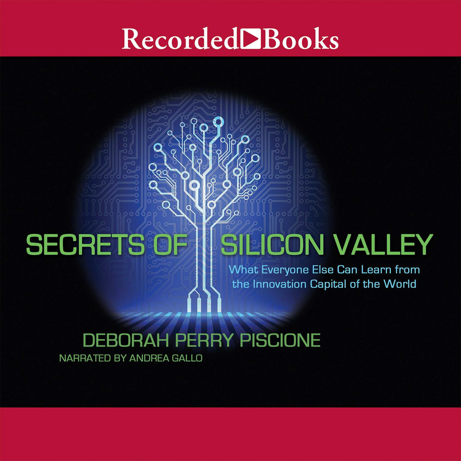 Printable Secrets of Silicon Valley: What Everyone Else Can Learn from the Innovation Capital of the World Audiobook Cover Art