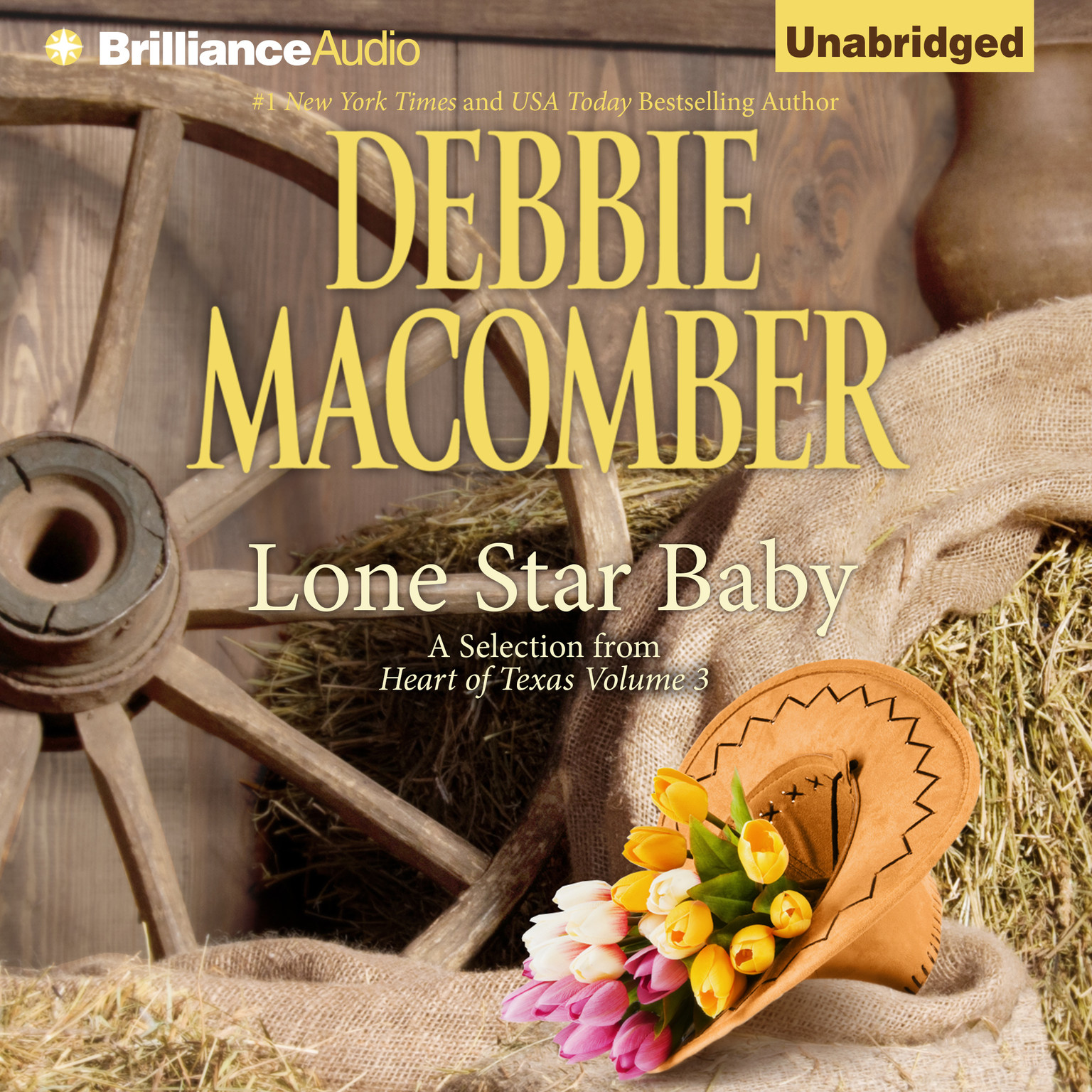 Printable Lone Star Baby Audiobook Cover Art