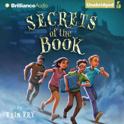 Secrets of the Book Audiobook, by Erin Fry
