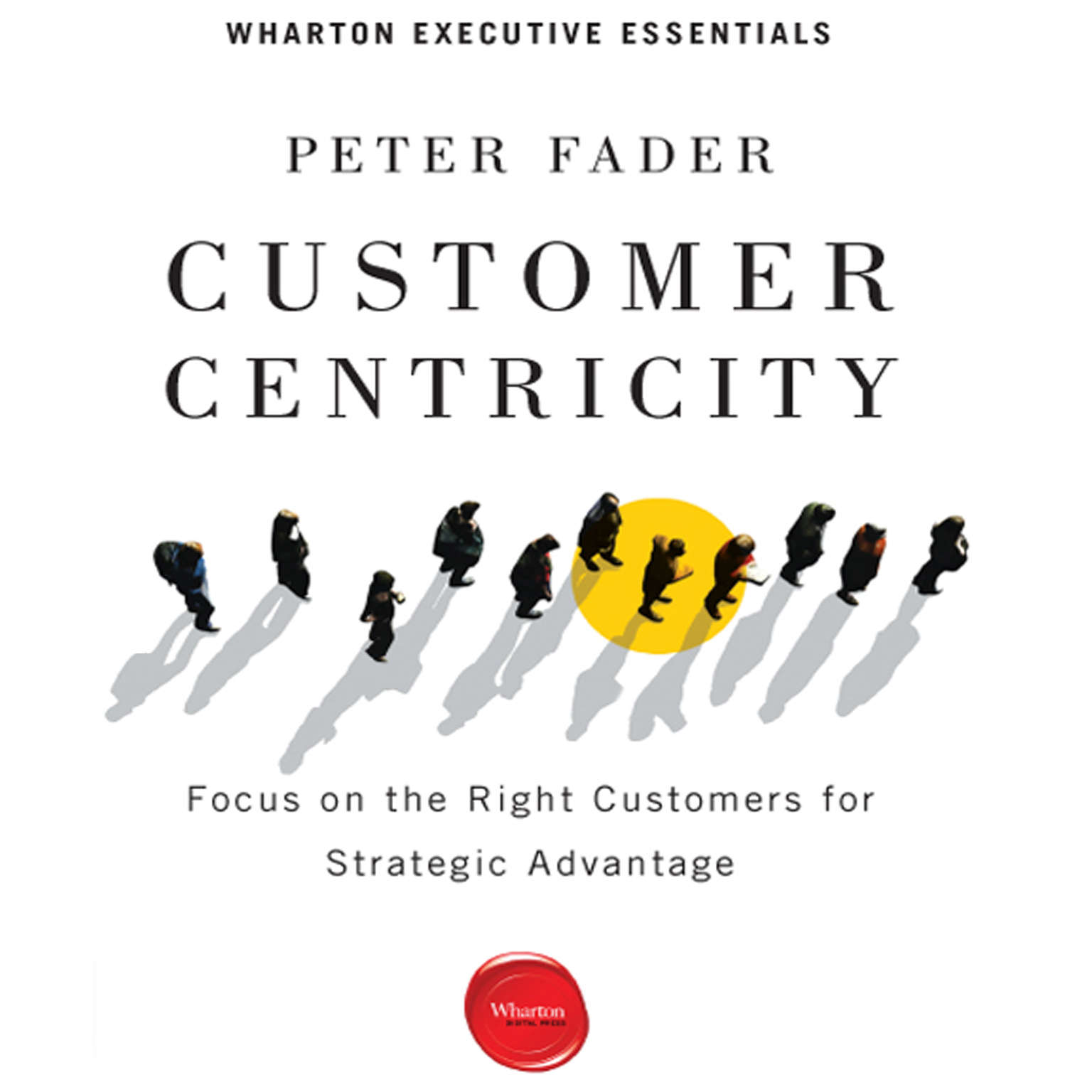 Printable Customer Centricity: Focus on the Right Customers for Strategic Advantage Audiobook Cover Art