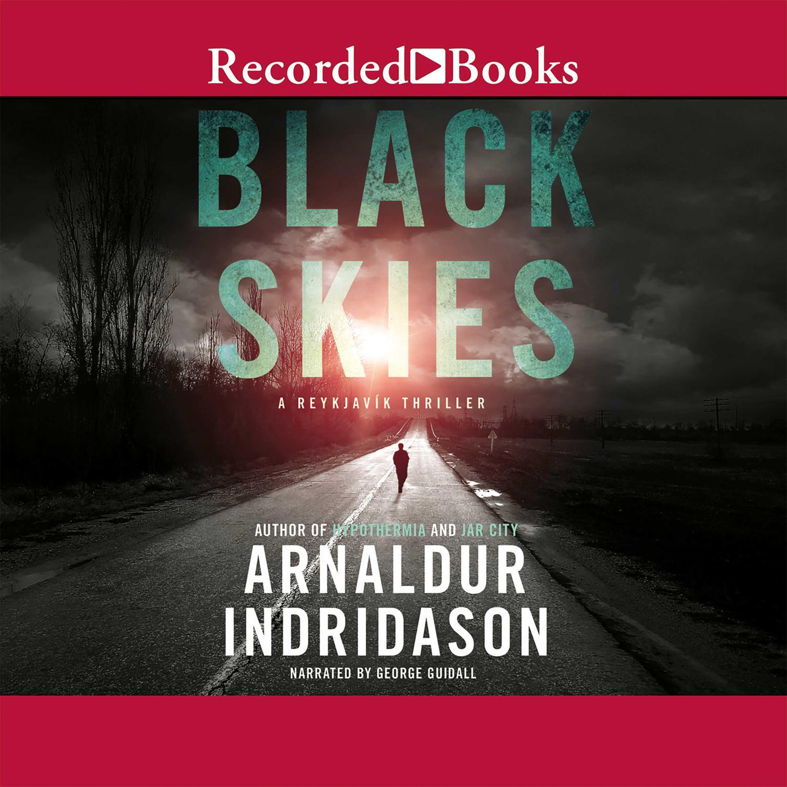 Printable Black Skies Audiobook Cover Art
