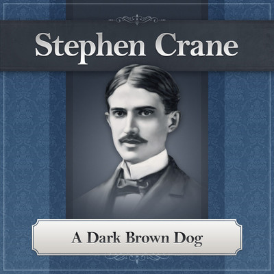 A Dark Brown Dog Audiobook, by Stephen Crane