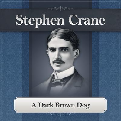 A Dark Brown Dog Audiobook, by Stephen Crane