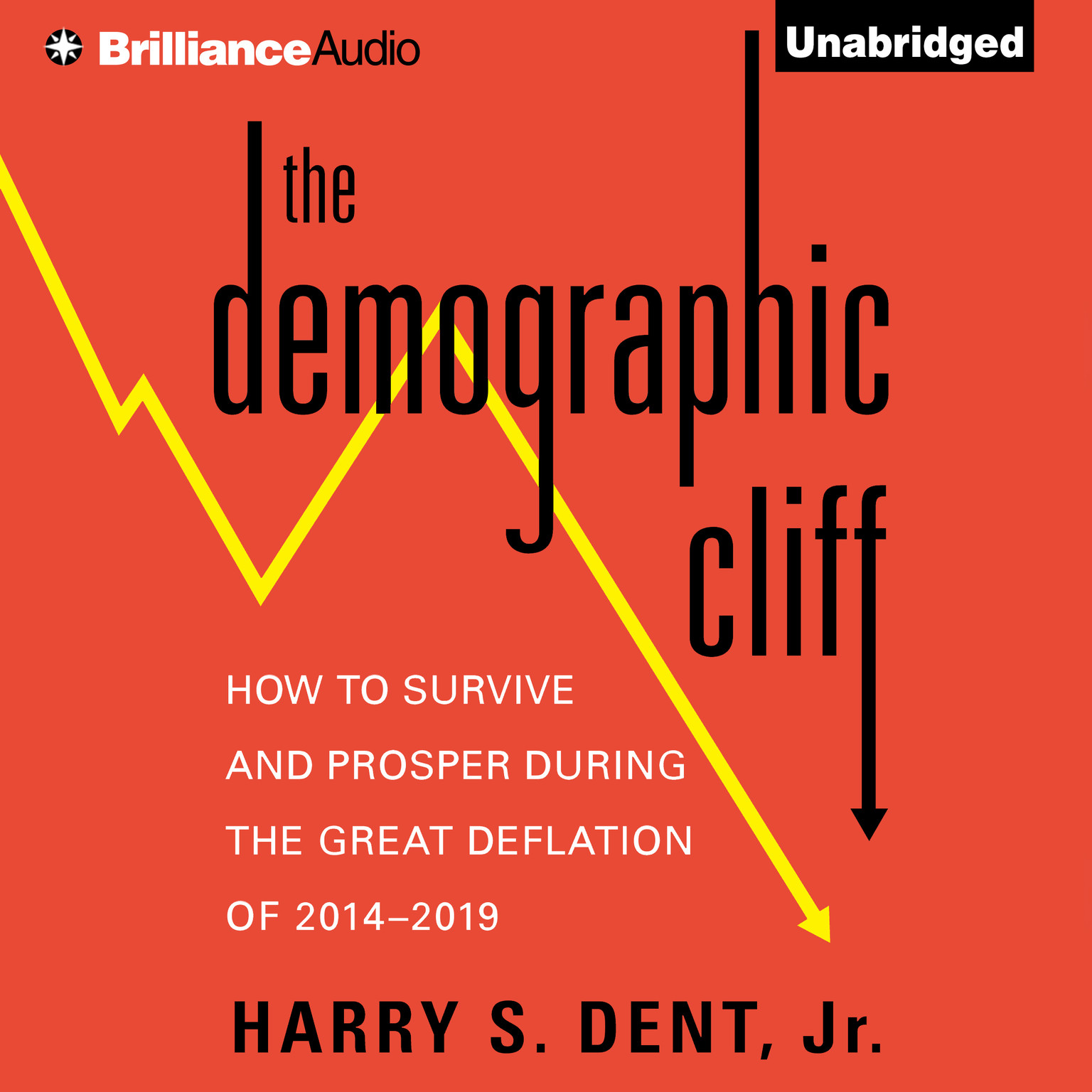 Printable The Demographic Cliff: How to Survive and Prosper during the Great Deflation of 2014–2019 Audiobook Cover Art
