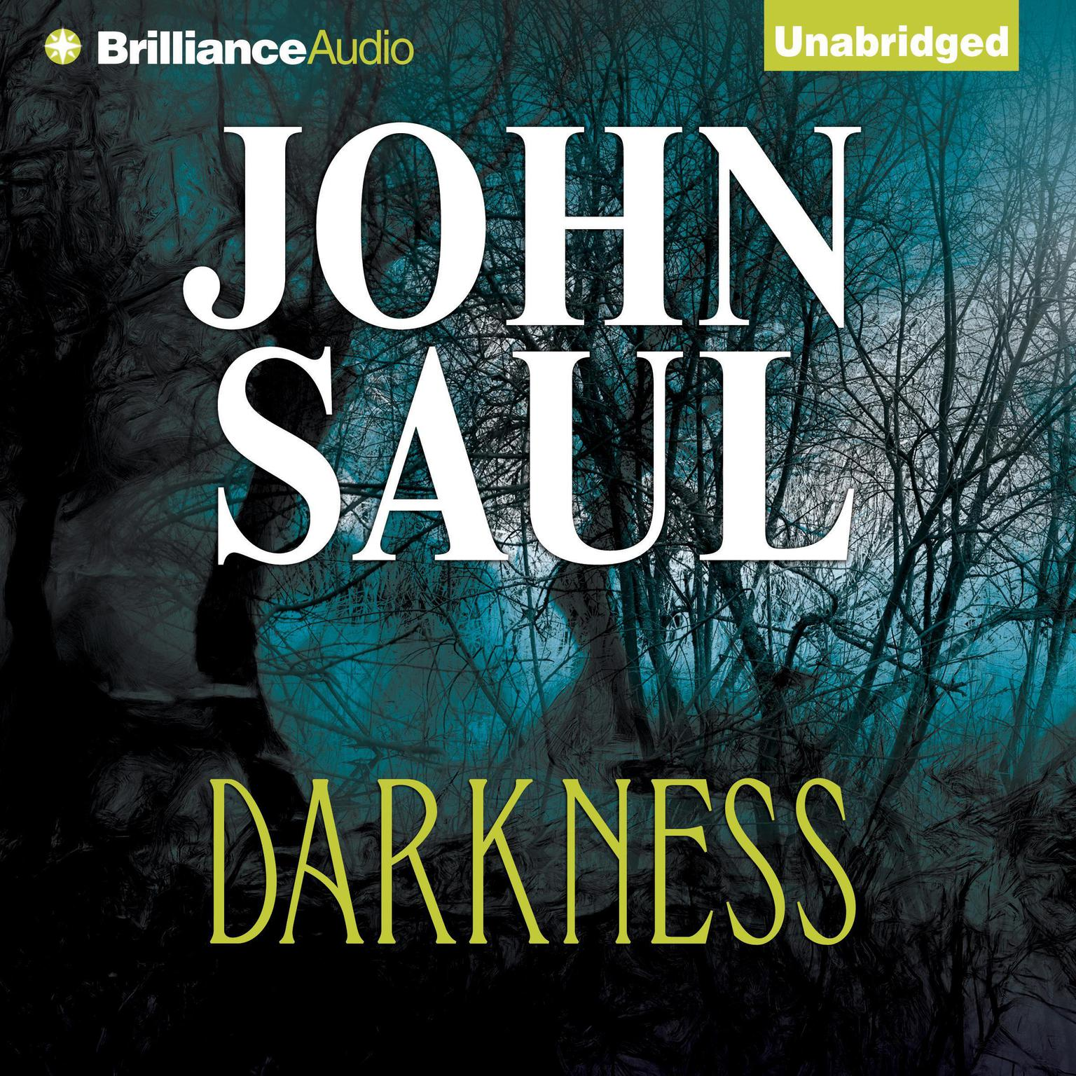 Printable Darkness Audiobook Cover Art