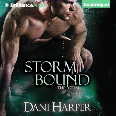 Storm Bound Audiobook, by Dani Harper