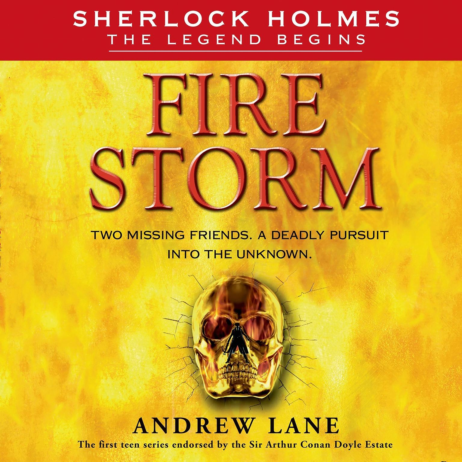 Printable Fire Storm Audiobook Cover Art