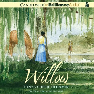 Willow Audiobook, by Tonya Cherie Hegamin