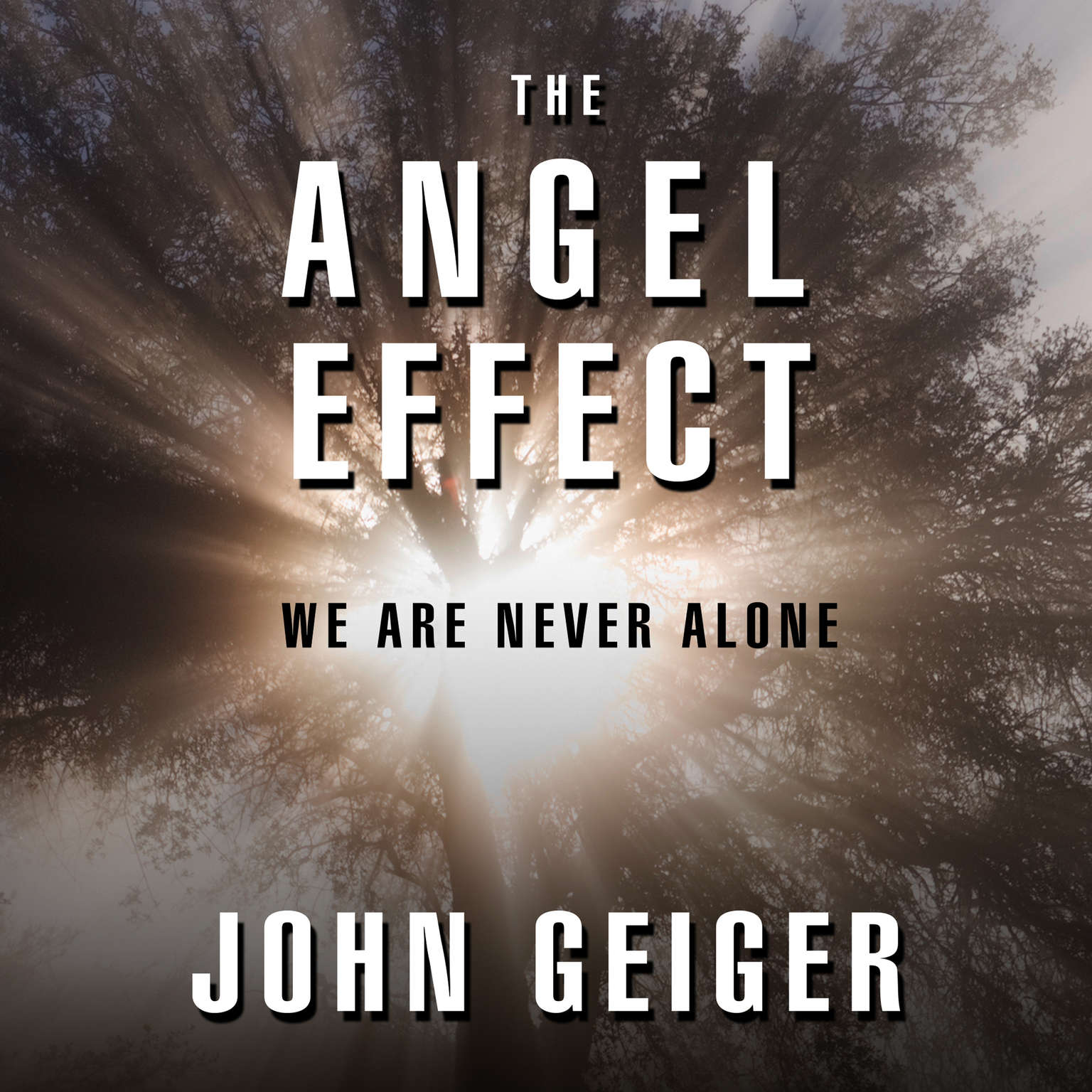 Printable The Angel Effect: The Powerful Force That Ensures We Are Never Alone Audiobook Cover Art