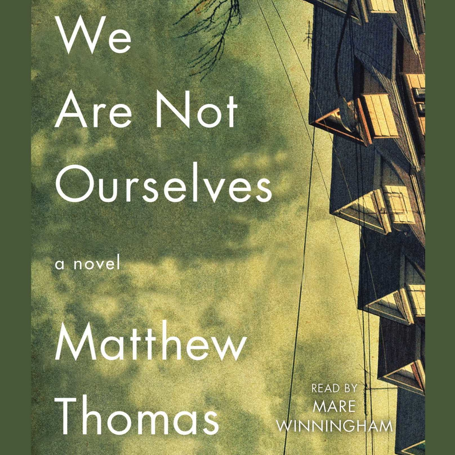 Printable We Are Not Ourselves: A Novel Audiobook Cover Art