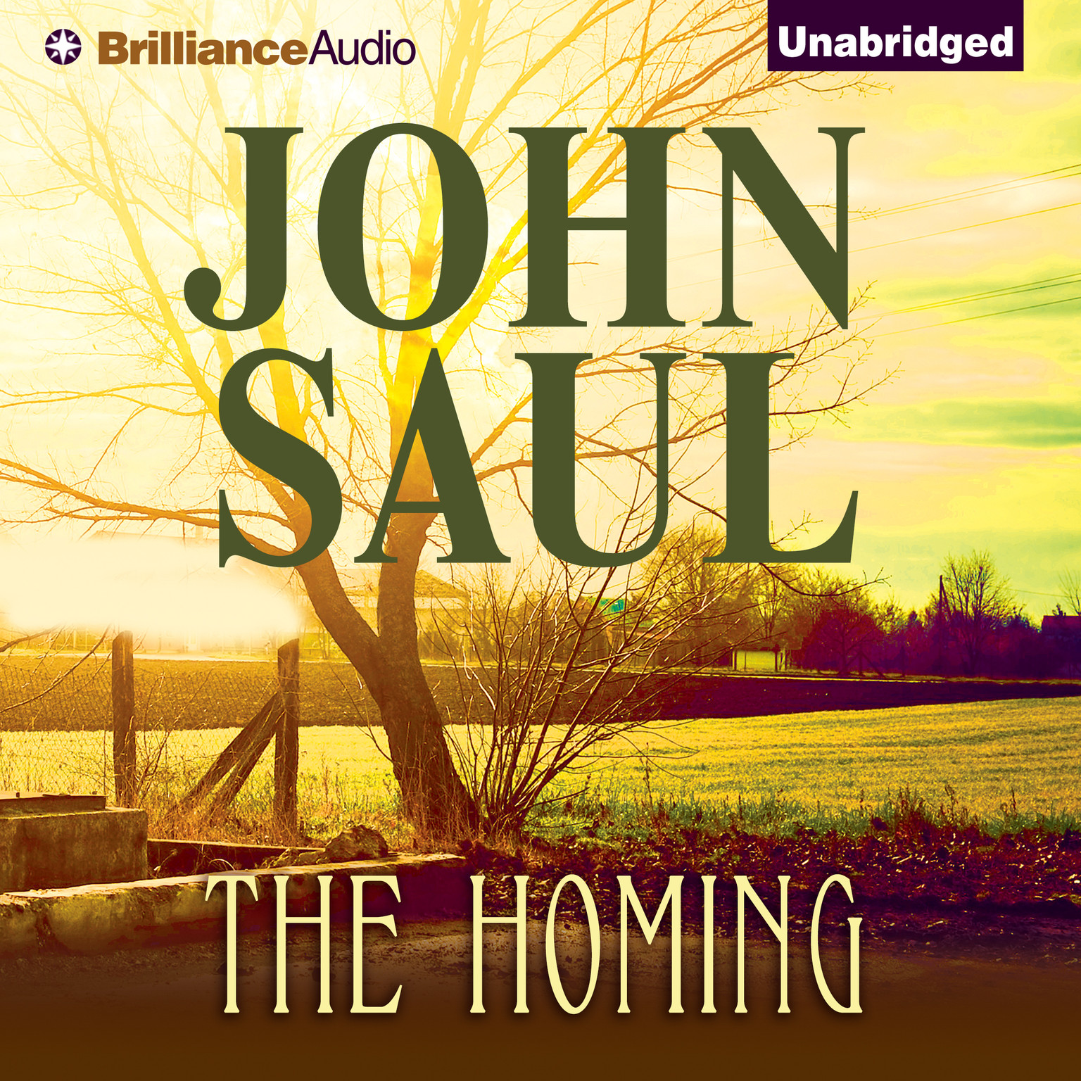 Printable The Homing Audiobook Cover Art