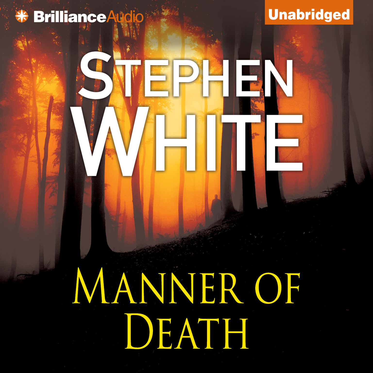 Printable Manner of Death Audiobook Cover Art