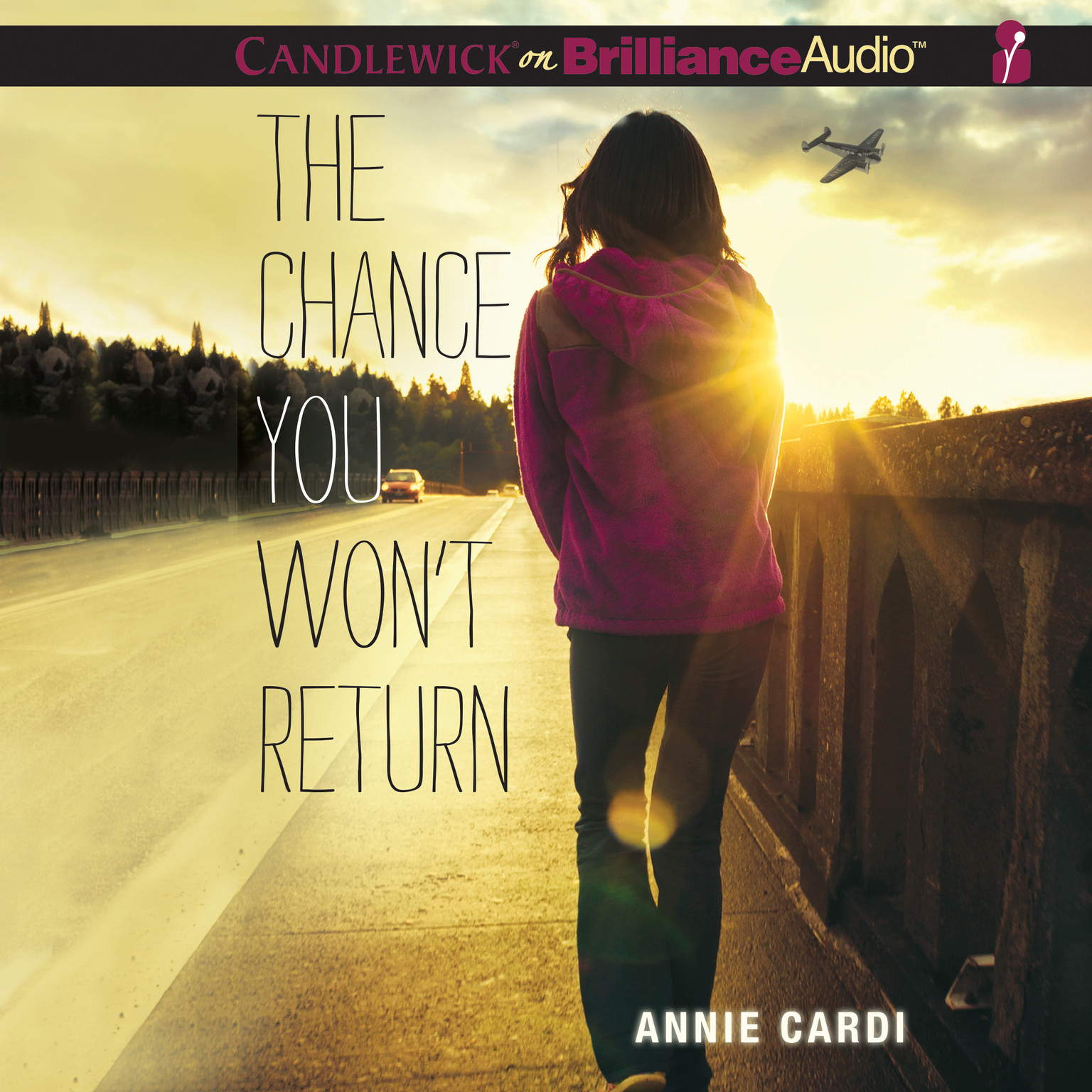 Printable The Chance You Won't Return Audiobook Cover Art