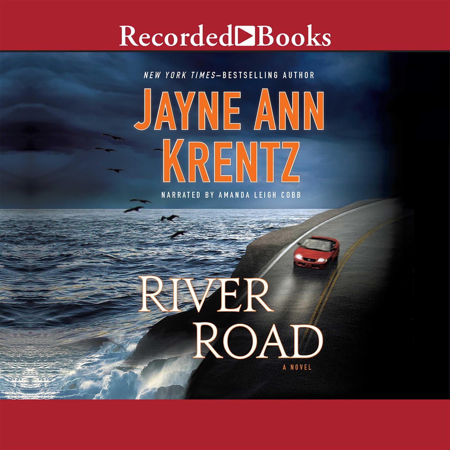 Printable River Road: A Novel Audiobook Cover Art