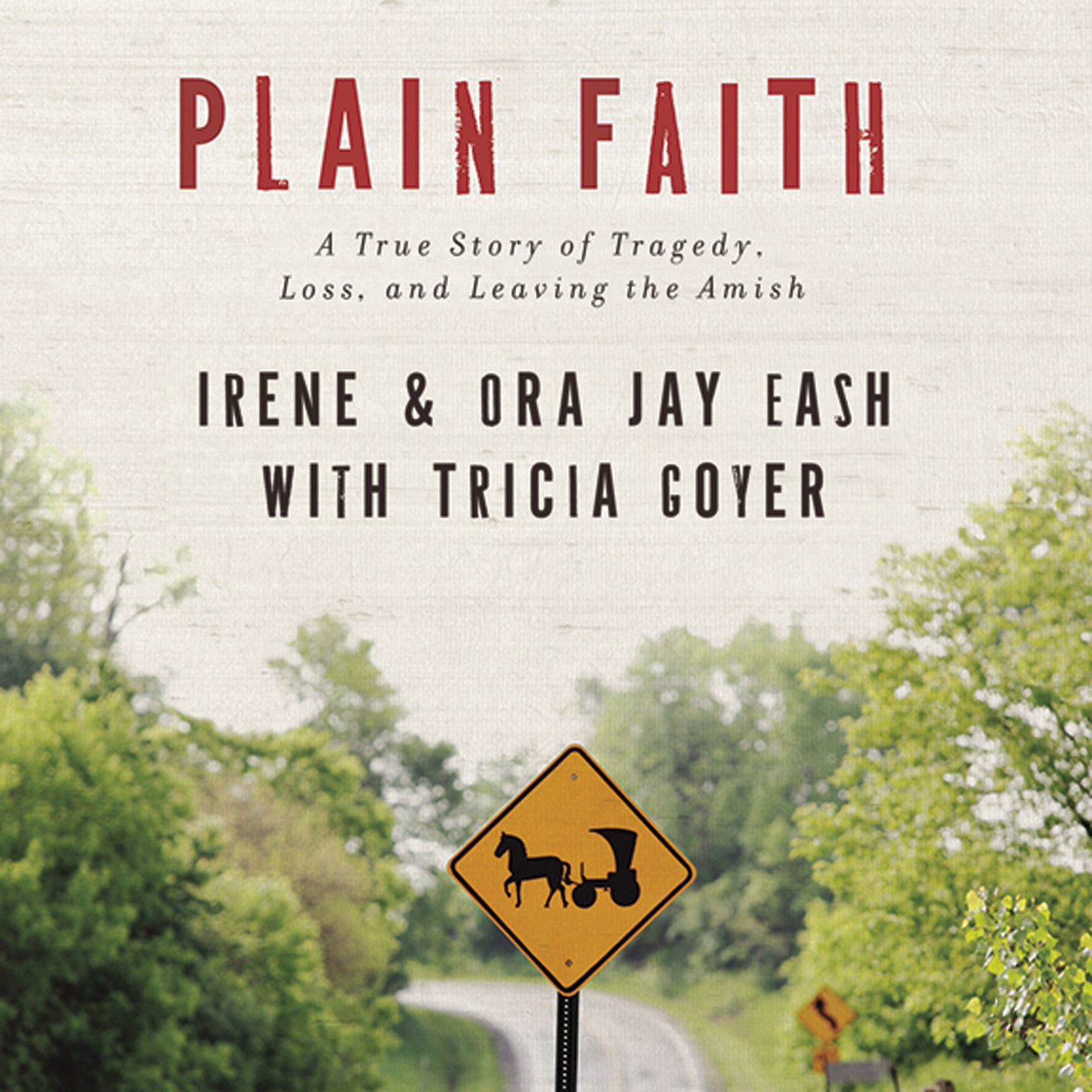 Printable Plain Faith: A True Story of Tragedy, Loss and Leaving the Amish Audiobook Cover Art