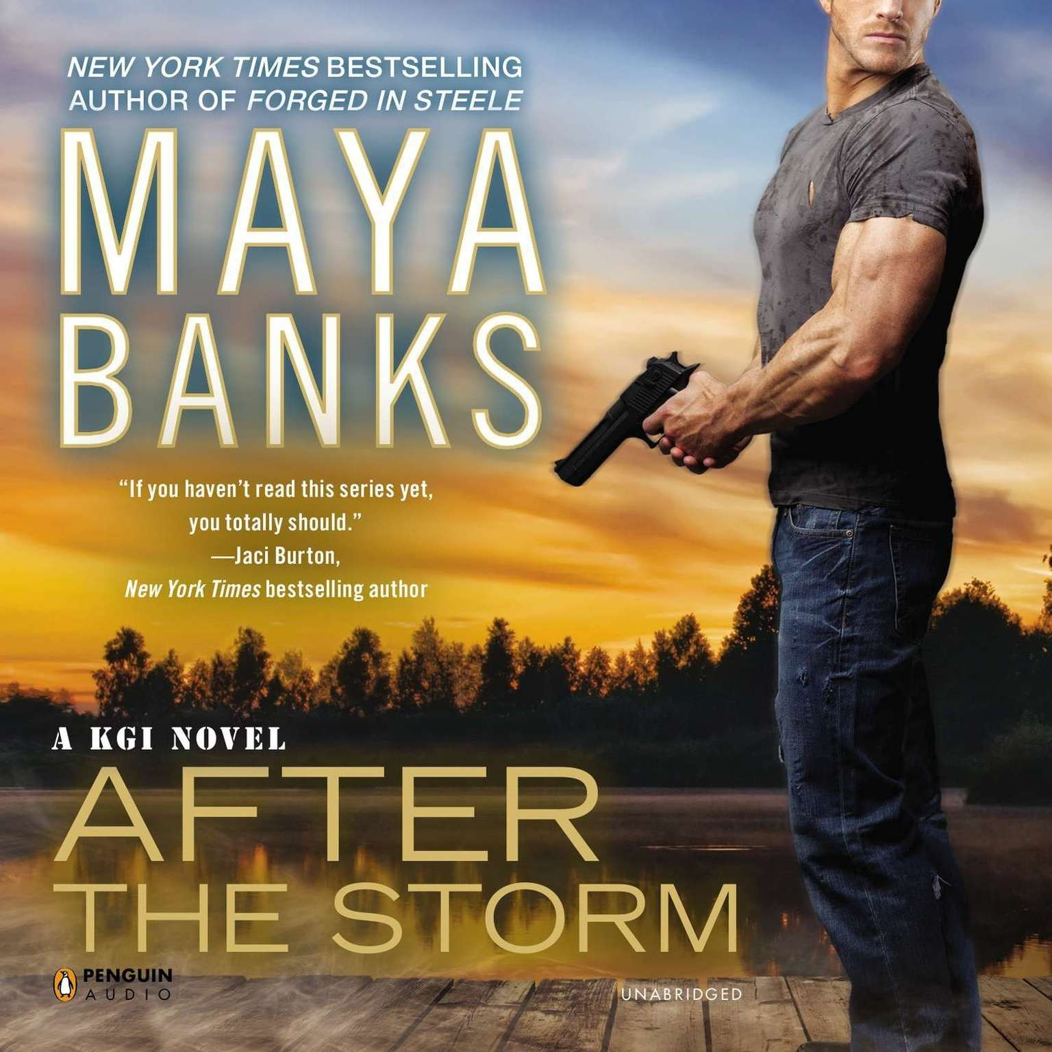 Printable After the Storm Audiobook Cover Art
