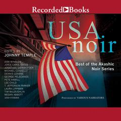 USA Noir: Best of the Akashic Noir Series Audiobook, by Johnny Temple, various authors