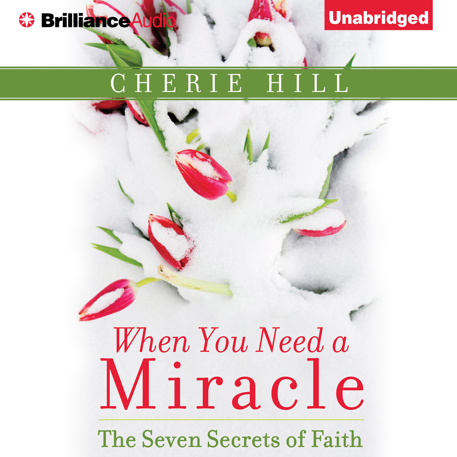Printable When You Need a Miracle: The Seven Secrets of Faith Audiobook Cover Art