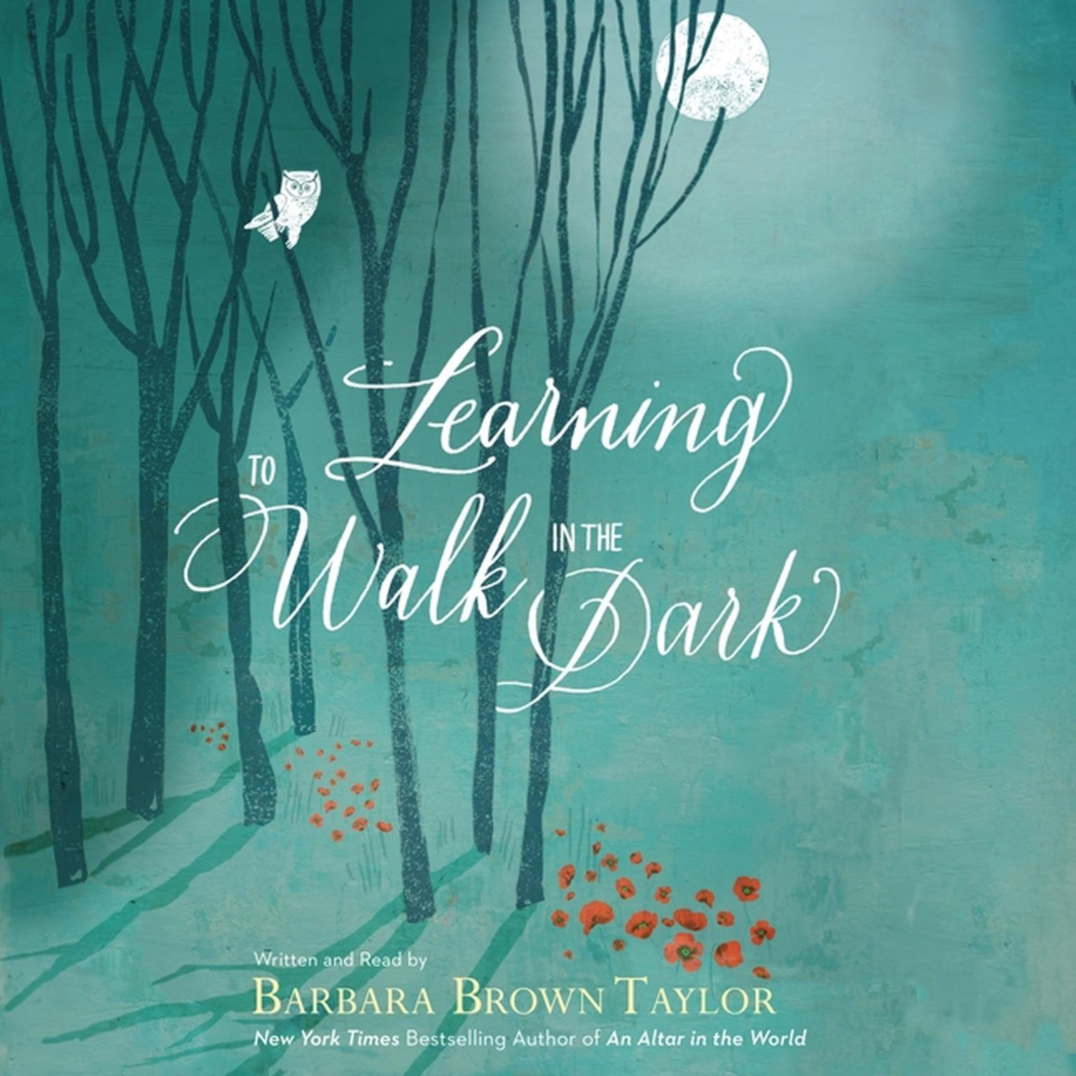 Printable Learning to Walk in the Dark: Because Sometimes God Shows Up at Night Audiobook Cover Art