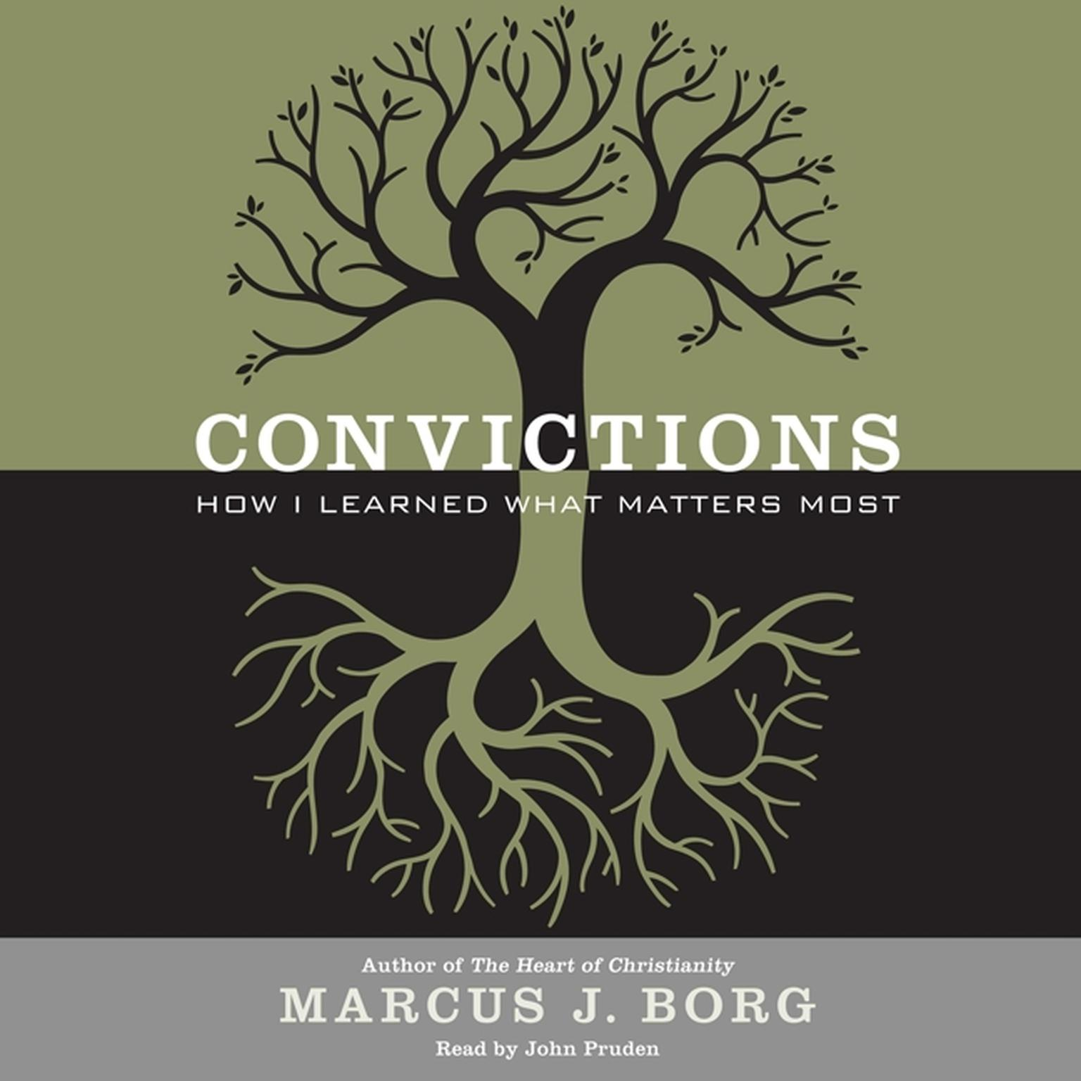 Printable Convictions: How I Learned What Matters Most Audiobook Cover Art