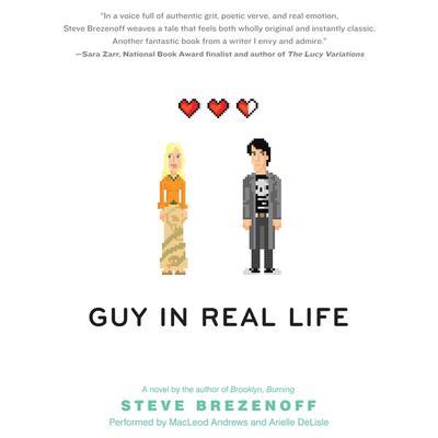 Guy in Real Life Audiobook, by Steve Brezenoff