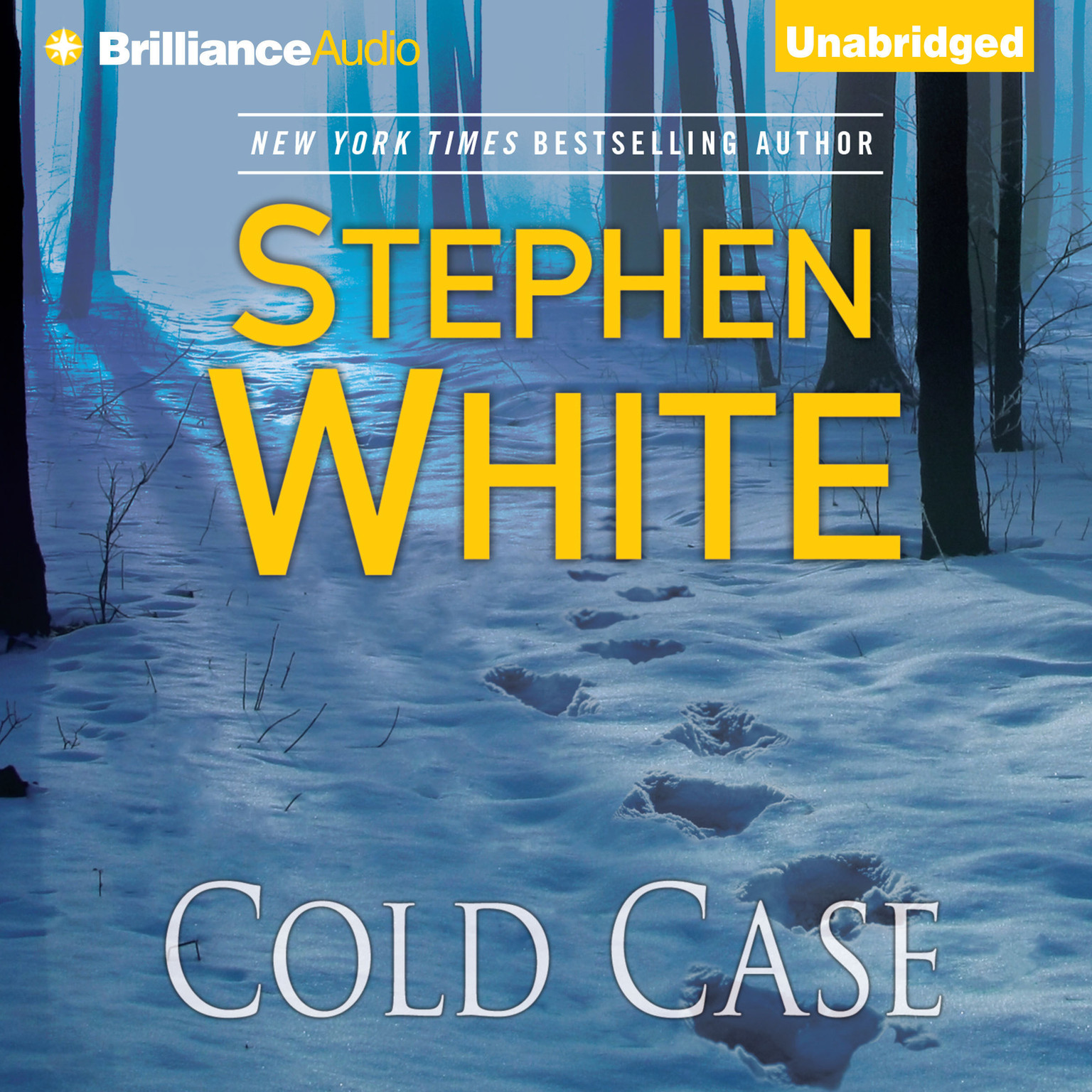 Printable Cold Case Audiobook Cover Art