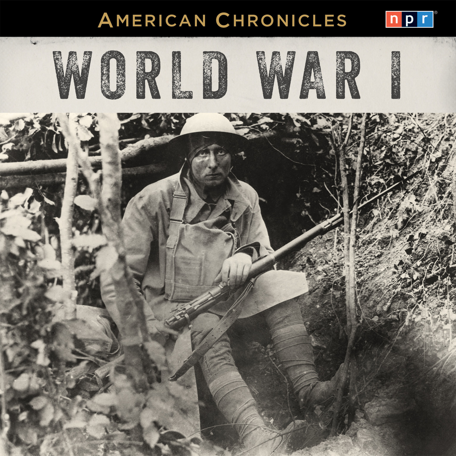 Printable NPR American Chronicles: World War I Audiobook Cover Art
