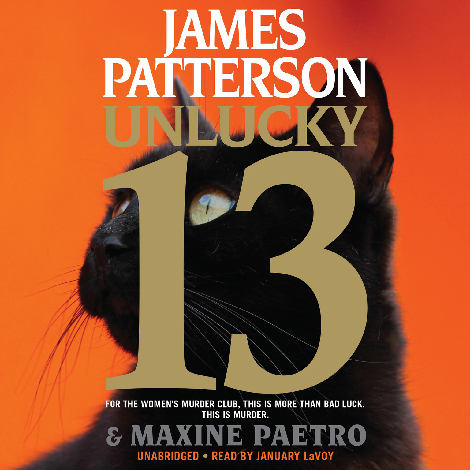 Printable Unlucky 13 Audiobook Cover Art