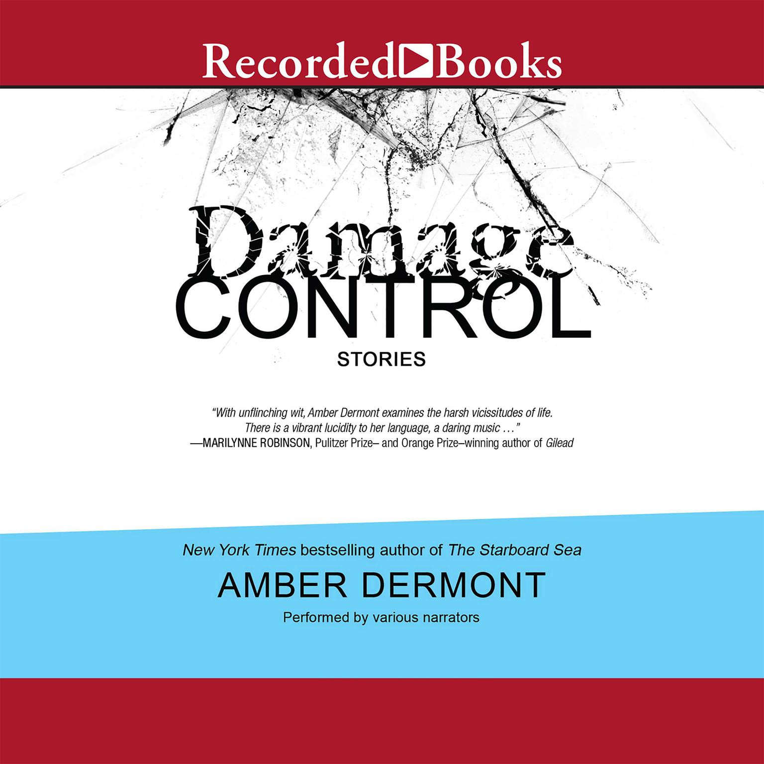 Printable Damage Control: Stories Audiobook Cover Art