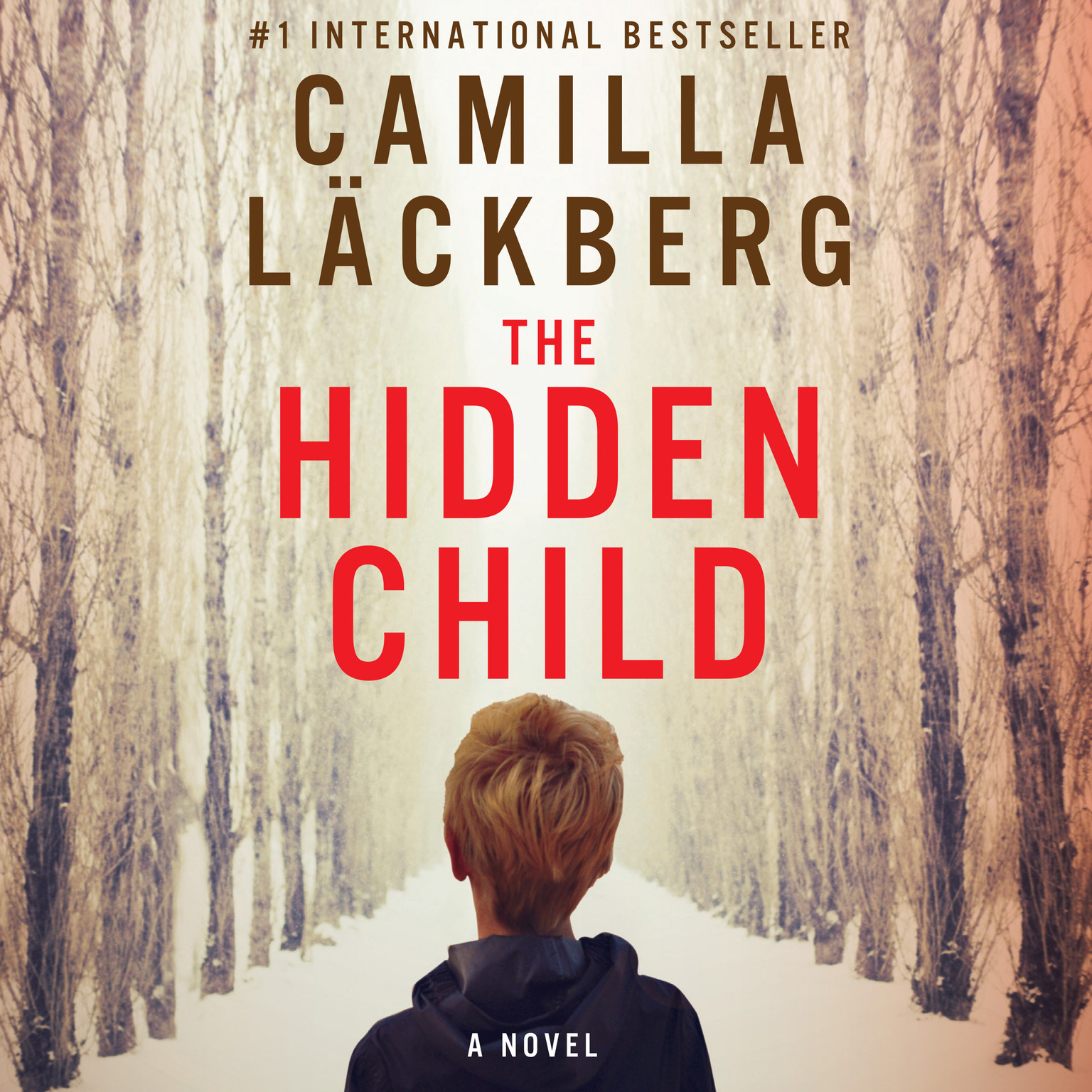 Printable The Hidden Child Audiobook Cover Art