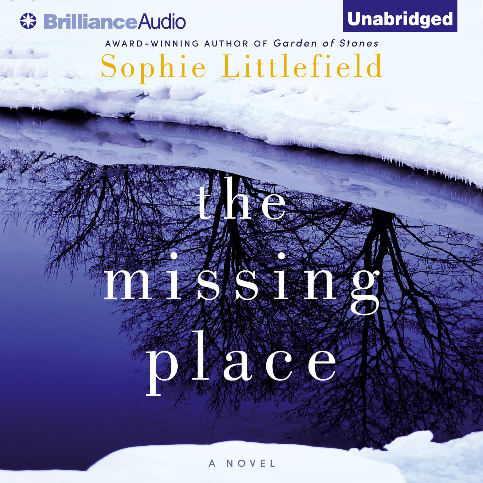 Printable The Missing Place Audiobook Cover Art