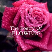 The Poetry of Flowers Audiobook, by various authors