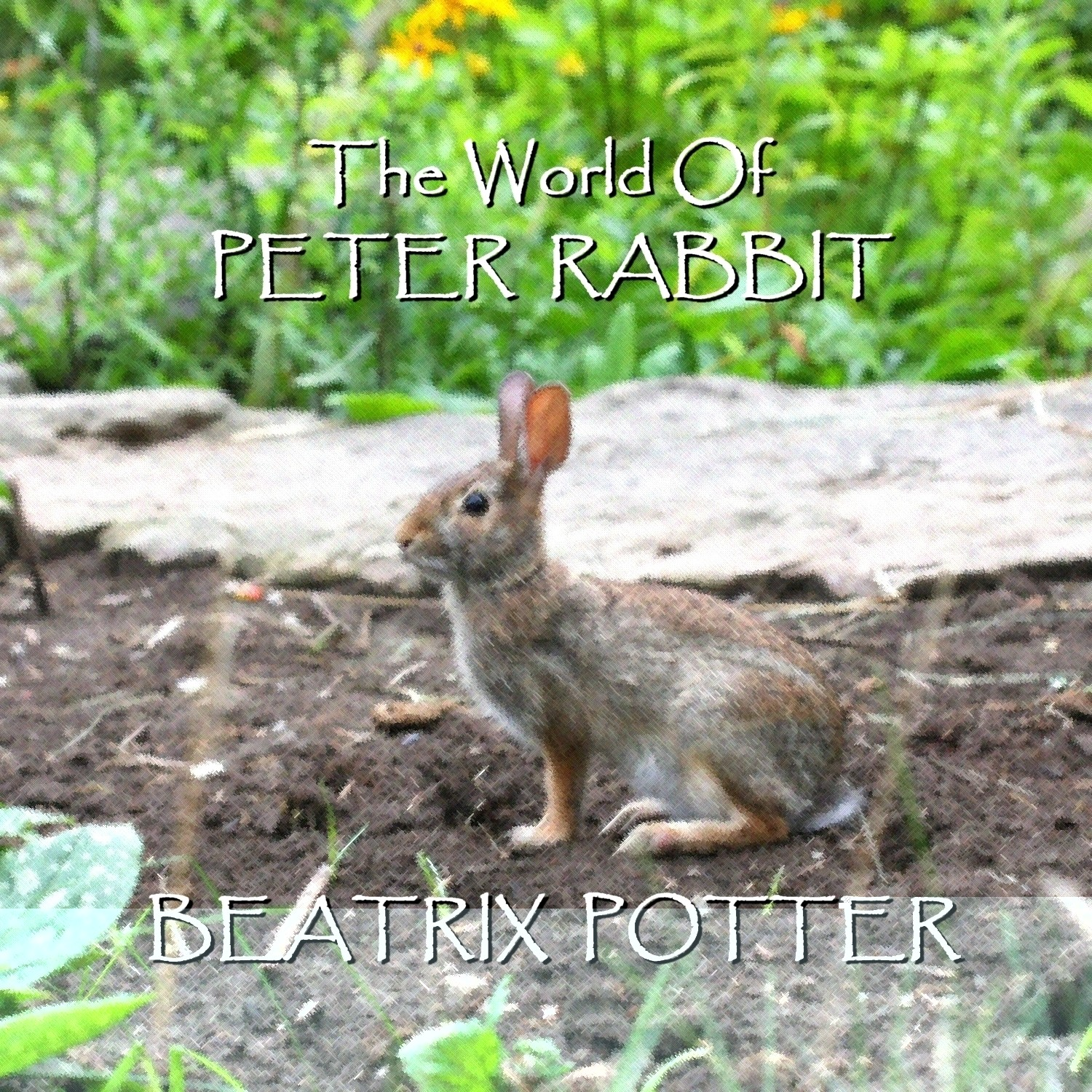 Printable Beatrix Potter: The Short Stories Audiobook Cover Art