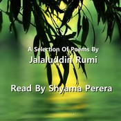 A Selection of Poems by Jalāl ad–Dīn ar–Rūmī Audiobook, by Rumi