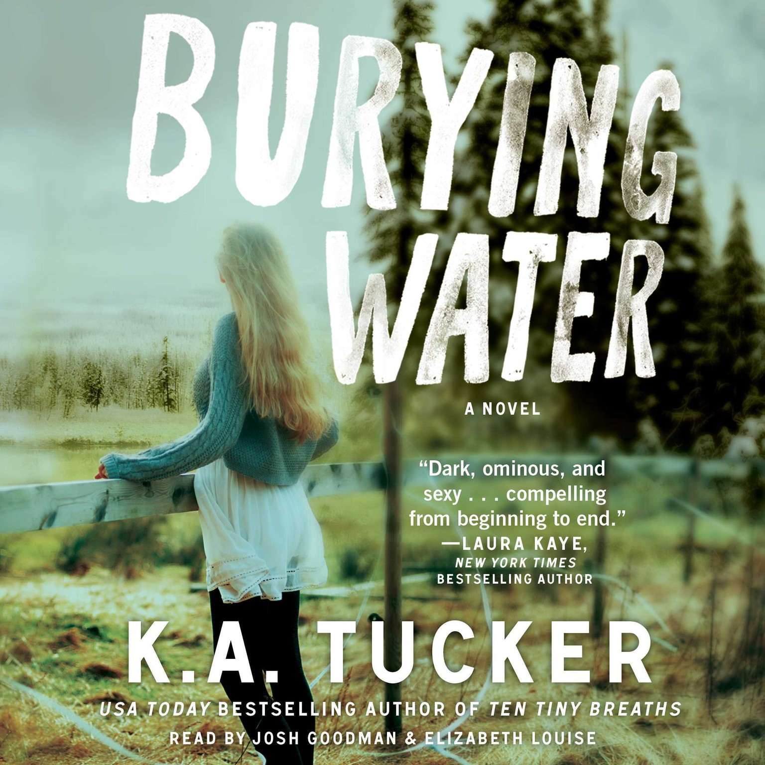 Printable Burying Water Audiobook Cover Art