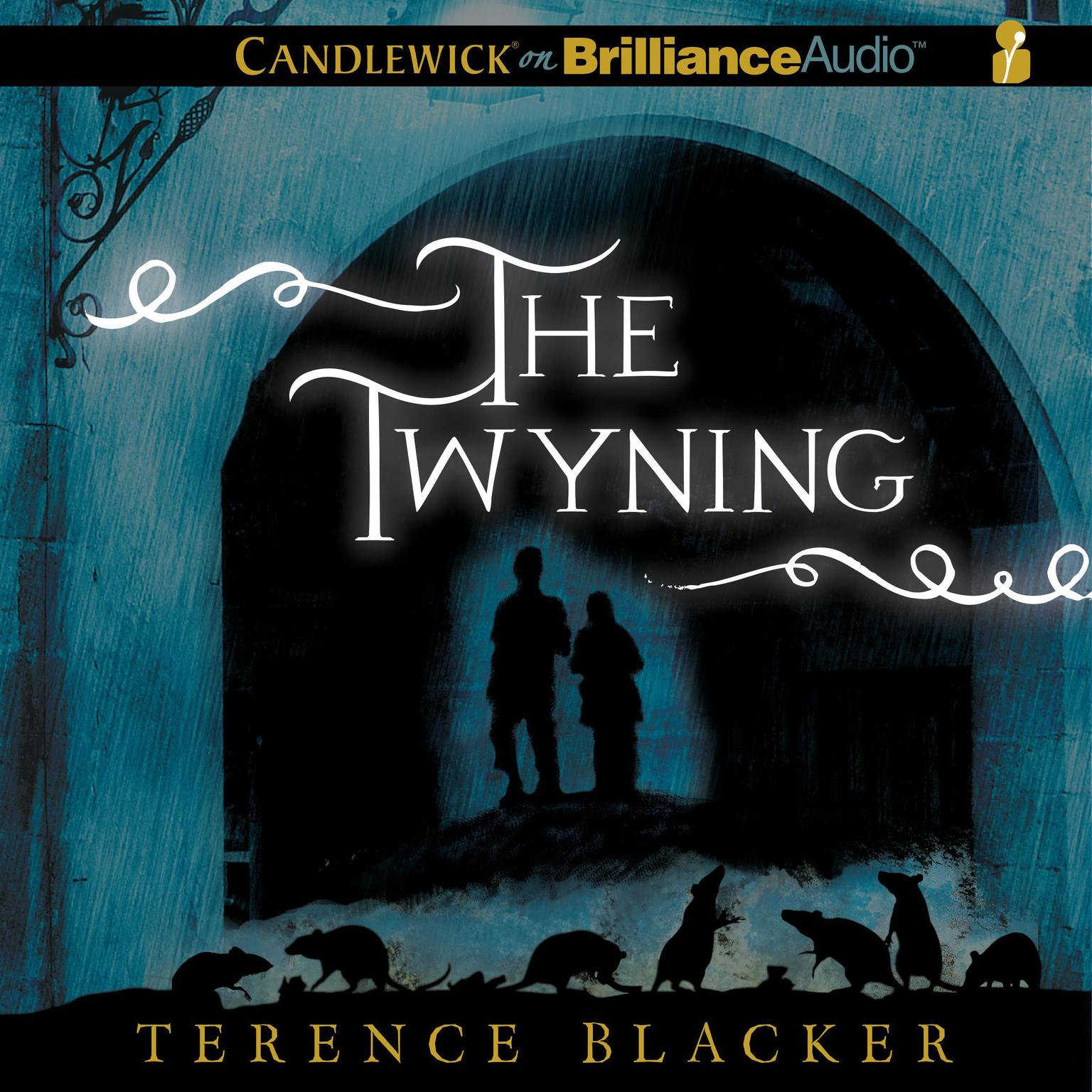 Printable The Twyning Audiobook Cover Art