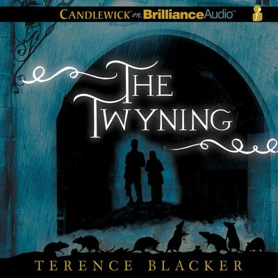 The Twyning Audiobook, by Terence Blacker