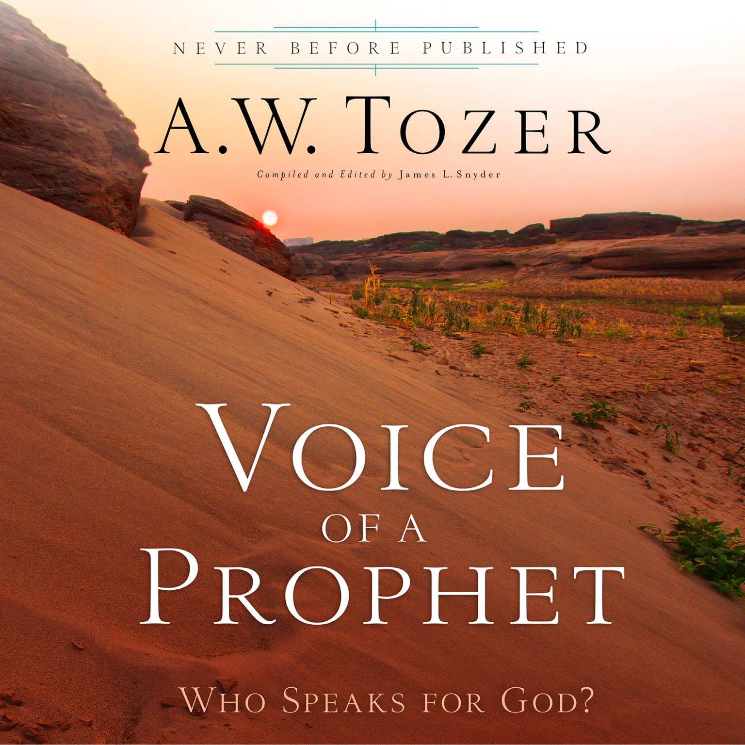 Printable Voice of a Prophet: Who Speaks for God? Audiobook Cover Art