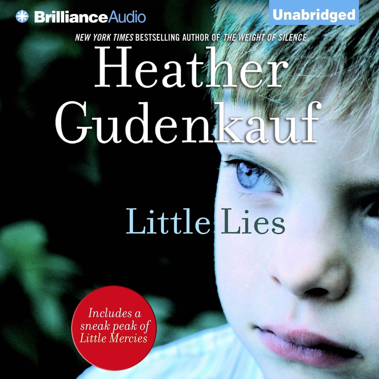 Printable Little Lies Audiobook Cover Art