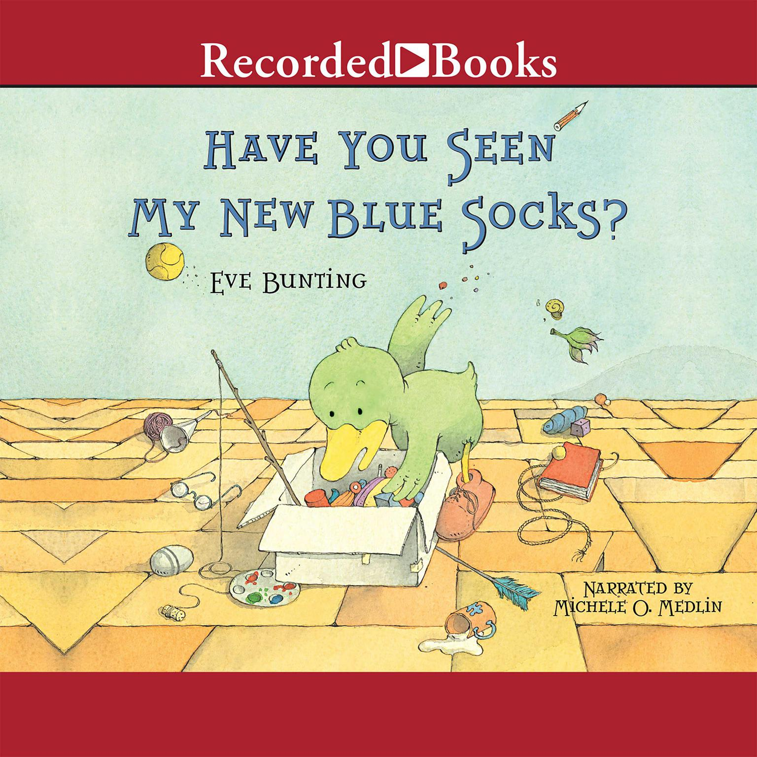 Printable Have You Seen My New Blue Socks? Audiobook Cover Art