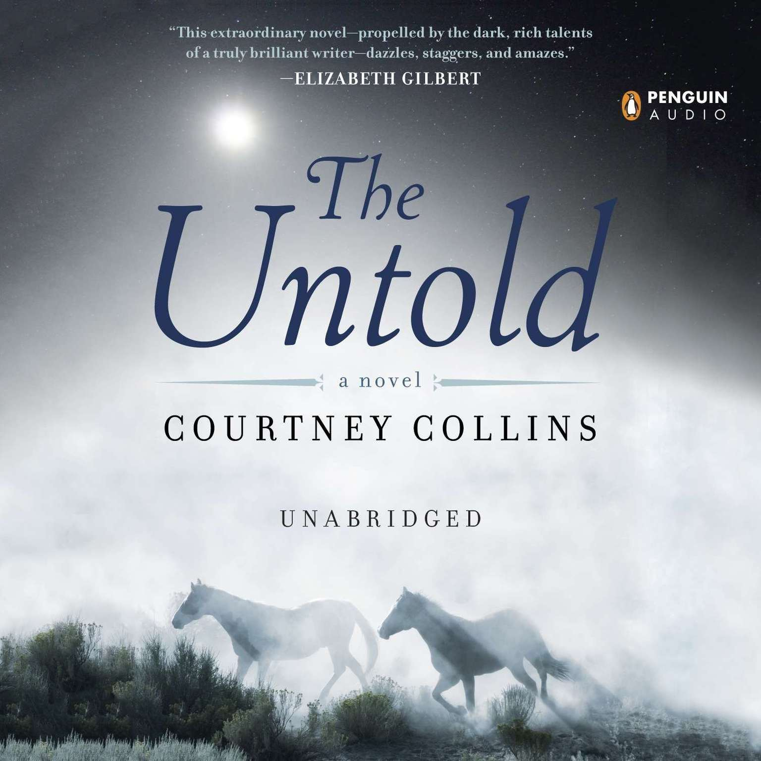 Printable The Untold Audiobook Cover Art